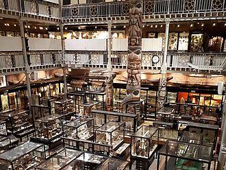 Besuch im Pitt Rivers Museum Oxford © HTW Berlin / Tobias Nettke